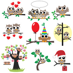 a set of different owl illustrations