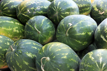 green watermelons