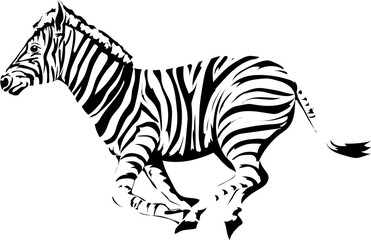 The running animal is a zebra.