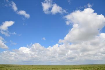 The African landscape. Ngorongoro, Tanzania