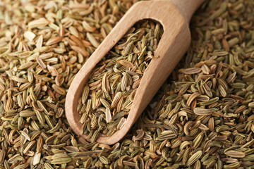 Heap of fennel seeds background with wooden scoop