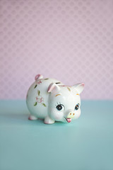 cute piggy bank money box against blue and pink colours
