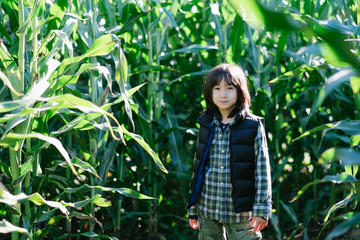 Young mixed race boy stands in corn field