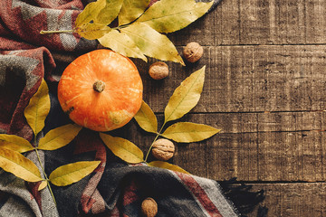 happy halloween or thanksgiving flat lay. pumpkin with leaves and walnuts on stylish scarf top view, space for text. seasonal greetings, autumn fall holidays. harvest time. cozy mood