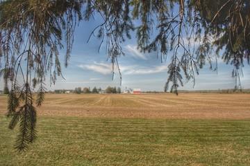 Cass City Farm I