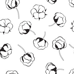 Floral seamless pattern with flower cotton.  Nature background