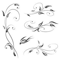 Floral decor with bird. Swirl line stylish flower set decorative