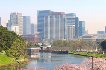 春の桜田濠
