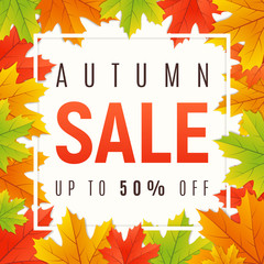 Autumn sale promotion banner, poster, card, background. Vector i