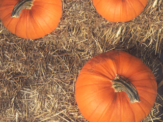 Rustic Fall Pumpkins and Hay Background From Directly Above