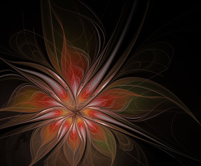 Abstract beautiful fractal autumn flower on a black background