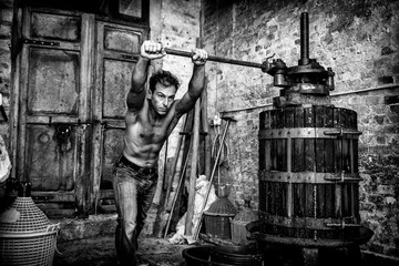 Shirtless winemaker farmer working on a traditional wine press . black and white picture