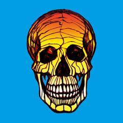 Detailed hand-drawn illustration of skull. Grunge weathered illustration.