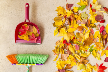 Cleaning dry autumn leaves from a concrete floor with a colorful broom and shovel