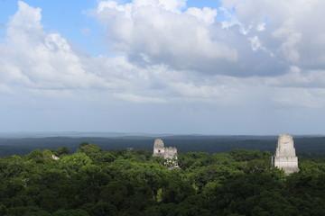 Piramidi di Tikal che sbucano dagli alberi