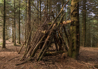 A makeshift hiking hut of branches, in a green forest, temporary shelter to stay safe in the bad weather, on a hike in the woods.
