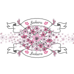 Flower ribbon of Sakura. Drawing and sketch on white background.