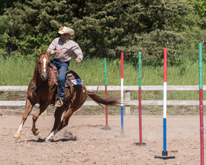 Older cowboy and appaloosa horse in obstacle course competition