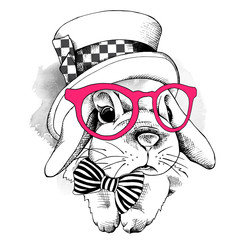 Small rabbit in a pink glasses with top hat. Vector illustration.
