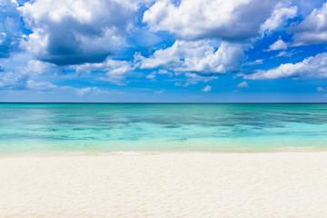 paradise tropical beach palm Caribbean Dominican Republic