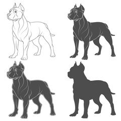 Set of black and white illustrations with a pit bull dog. Isolated vector objects on white background.