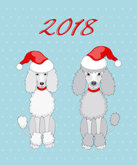 pair of poodle with 2018