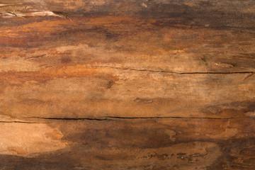 Brown natural wood texture closeup background