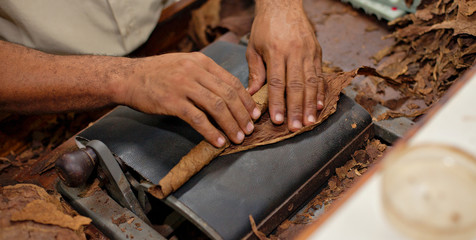 good tobacco Homemade cigars