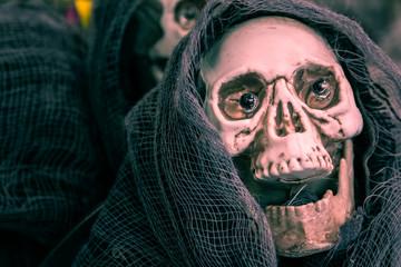 Skull Halloween Decoration Skeleton Spooky Prop Holiday Object Closeup