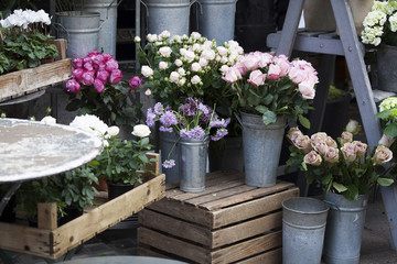 the Roses and cyclamens in pots on wooden boxes as decoration of a flower shop