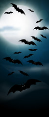 Night, full moon and bats, vertical banner. Colorful scary Halloween illustration. Vector