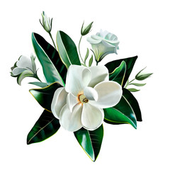 A Little Gem. White Magnolia close up with leaves and eustomas isolated on white background