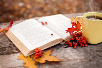 Book with open pages and mug with hot tea and red berries
