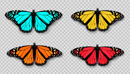 Realistic 3d Monarch butterfly set. Colorful bright detailed mesh vector illustration with shadow on transparent background. Spring summer banner decoration