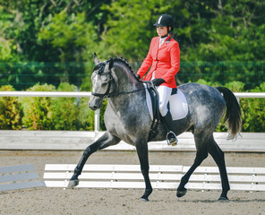 Young elegant rider woman and gray horse. Beautiful girl at advanced dressage test on equestrian competition. Professional female horse rider, equine theme. Saddle, bridle, boots and other details.