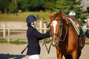The rider is saddling his horse before the competition