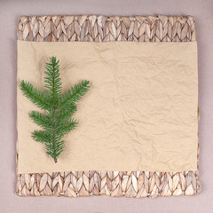 spruce branches on a background of crumpled paper