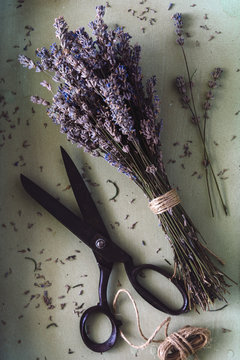 Close up of dried lavender blossoms and scissors