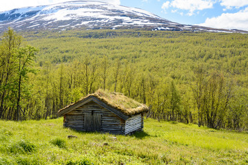 Old barn with a sod roof in a mountain valley