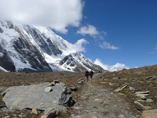 Beautiful mountain path under snow capped Himalaya to the Tilicho lake