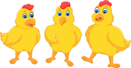 sweet three baby chicken cartoon