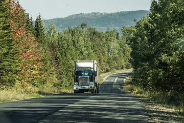 Semi truck on Highway deep forest in Canada ontario quebec