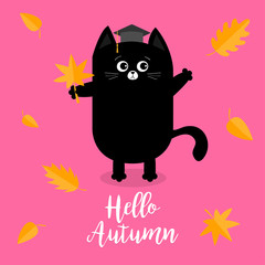 Hello autumn. Black cat Graduation hat Academic Cap Orange red fall leaf. Happy surprised emotion. Cute funny cartoon baby character. Pet animal collection. Pink background. Isolated.