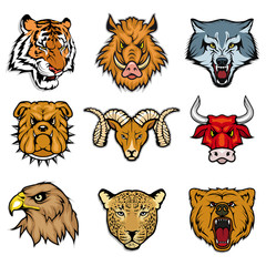 animal heads set including bengal tiger, wild boar, wolf, bulldog, ram, bull, eagle, leopard, grizzly bear