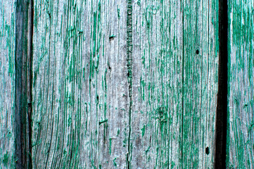 Cracked weathered emerald green shabby chic painted wooden board texture