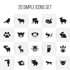Set Of 20 Editable Zoo Icons. Includes Symbols Such As Giraffe, Owl, Ox And More. Can Be Used For Web, Mobile, UI And Infographic Design.