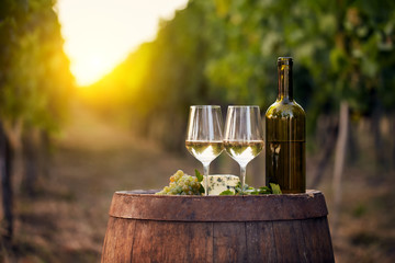 Two glasses of white wine with a bottle on a wooden barrel in a vineyard