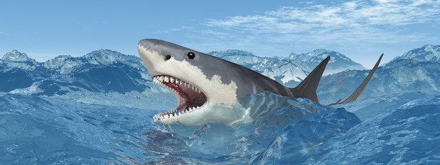 Weißer Hai in stürmischer See