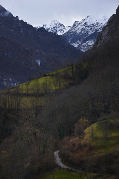 Valle en la montaña