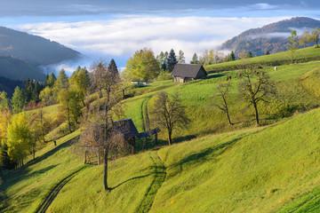 View from Pokljuka Plateau, Slovenia